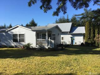 161 SE Ashley Rd, Shelton, WA 98584 (#1089021) :: Ben Kinney Real Estate Team