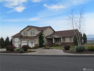 8448 Dune Lake Rd SE, Moses Lake, WA 98837 (#1089116) :: Ben Kinney Real Estate Team