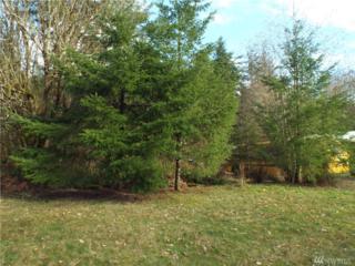 1166 Rush Rd N, Napavine, WA 98532 (#1089141) :: Ben Kinney Real Estate Team