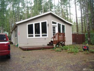 171 NE Tahuya Blvd, Tahuya, WA 98588 (#1089193) :: Ben Kinney Real Estate Team