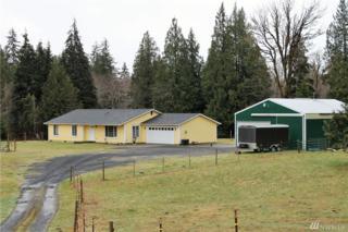 8271 W Shelton Matlock Rd, Shelton, WA 98584 (#1089226) :: Ben Kinney Real Estate Team