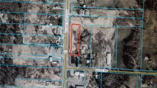 4900 Guide Meridian, Bellingham, WA 98226 (#1089291) :: Ben Kinney Real Estate Team