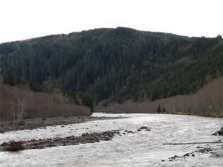 9690 Spirit Lake Hwy, Toutle, WA 98649 (#1089306) :: Ben Kinney Real Estate Team