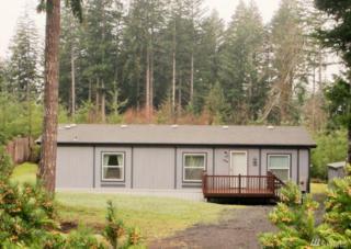 300 E Skookum Dr NE, Shelton, WA 98584 (#1089334) :: Ben Kinney Real Estate Team