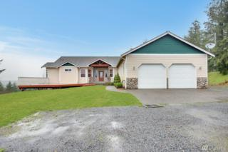 40008 17th Ave S, Roy, WA 98580 (#1089551) :: Ben Kinney Real Estate Team
