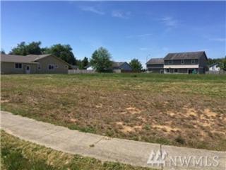 604 Woodside Rd, Cosmopolis, WA 98537 (#1089672) :: Ben Kinney Real Estate Team