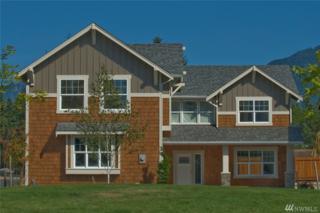 4020 333rd Ave NE, Carnation, WA 98014 (#1089688) :: Ben Kinney Real Estate Team