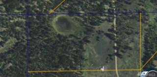 551 Jh Green Rd, Riverside, WA 98849 (#1089699) :: Ben Kinney Real Estate Team