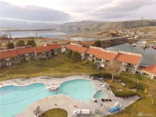 8903 NW Crescent Bar Rd #178, Quincy, WA 98848 (#1089740) :: Ben Kinney Real Estate Team