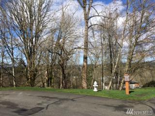 174-XX 102nd Ave NE, Bothell, WA 98011 (#1089749) :: Ben Kinney Real Estate Team
