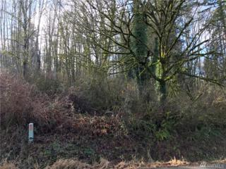5350 E Hillcrest Dr, Port Orchard, WA 98366 (#1089750) :: Ben Kinney Real Estate Team