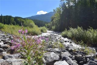 15031 Welcome Rd, Glacier, WA 98244 (#1089752) :: Ben Kinney Real Estate Team