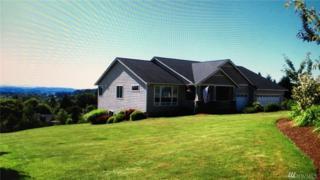 1611 Far View Lane, Centralia, WA 98531 (#1089805) :: Ben Kinney Real Estate Team