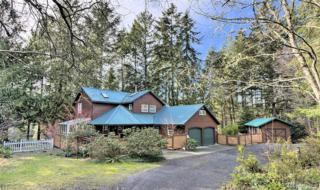 2490 E Grapeview Loop Rd, Grapeview, WA 98546 (#1089927) :: Ben Kinney Real Estate Team
