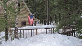45 Silver Creek - Usfs Cabin, Greenwater, WA 98022 (#1090150) :: Ben Kinney Real Estate Team