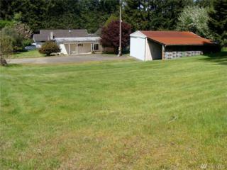 1100 Fogarty Ave, Shelton, WA 98584 (#1090198) :: Ben Kinney Real Estate Team