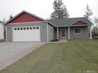110 Lillian Lane SE, Rainier, WA 98589 (#1090368) :: Ben Kinney Real Estate Team