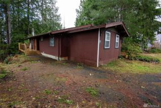 399 W Satsop Dr, Elma, WA 98541 (#1090429) :: Ben Kinney Real Estate Team