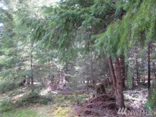 62315 Mountain Beaver Wy E, Greenwater, WA 98022 (#1090431) :: Ben Kinney Real Estate Team