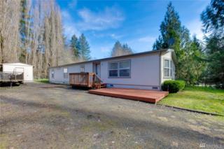 2020 NE Tahuya River Dr, Tahuya, WA 98588 (#1090435) :: Ben Kinney Real Estate Team