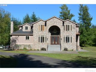 371 Panda Rd, Washougal, WA 98671 (#1090442) :: Ben Kinney Real Estate Team