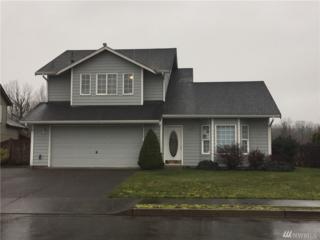 607 Callendar St NW, Orting, WA 98360 (#1090502) :: Ben Kinney Real Estate Team