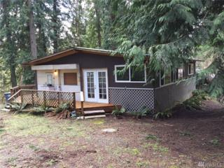 12110 Sound Dr, Anderson Island, WA 98303 (#1090577) :: Ben Kinney Real Estate Team