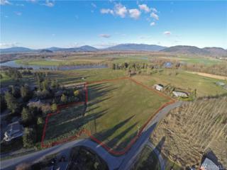 0-NHN Swan Rd, Mount Vernon, WA 98273 (#1090586) :: Ben Kinney Real Estate Team