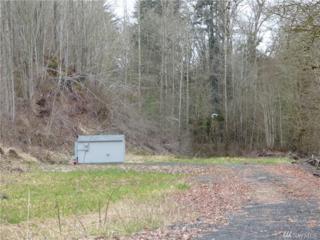 105 Cook Ferry Rd, Castle Rock, WA 98611 (#1090861) :: Ben Kinney Real Estate Team