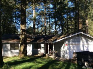 3623 Carnegie Dr SE, Lacey, WA 98503 (#1090921) :: Ben Kinney Real Estate Team