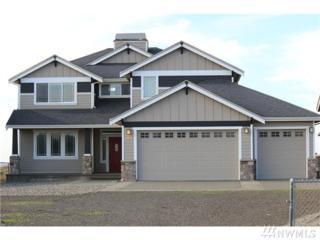 505 S Dune Crest, Westport, WA 98595 (#1090980) :: Ben Kinney Real Estate Team