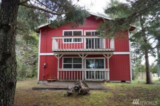 102 N Narwhal Lp, Ocean Shores, WA 98569 (#1091033) :: Ben Kinney Real Estate Team