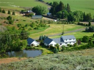 2422 Hunter Rd, Ellensburg, WA 98926 (#1091091) :: Ben Kinney Real Estate Team