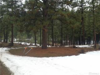 10 Norway Pine Dr, Tonasket, WA 98855 (#1091123) :: Ben Kinney Real Estate Team