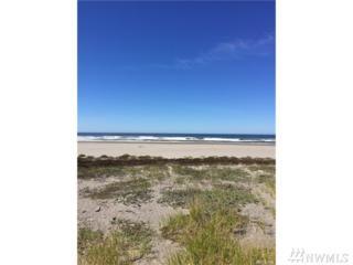 15307 Pacific Wy, Long Beach, WA 98631 (#1091149) :: Ben Kinney Real Estate Team