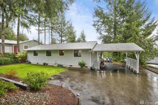 241 NE Jolly Roger Lane, Belfair, WA 98528 (#1091156) :: Ben Kinney Real Estate Team