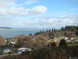 0 Rocky Point Dr, Camano Island, WA 98282 (#1091260) :: Ben Kinney Real Estate Team