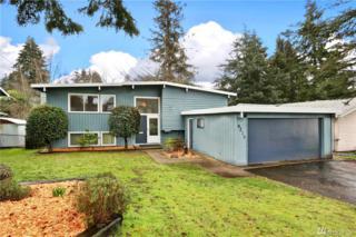 9226 11th Ave SW, Seattle, WA 98106 (#1091267) :: Ben Kinney Real Estate Team
