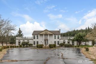 21916 SE 392nd St, Enumclaw, WA 98022 (#1091273) :: Ben Kinney Real Estate Team