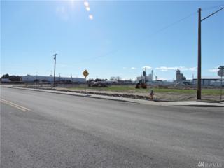 0 6th Ave Ne, Quincy, WA 98848 (#1091304) :: Ben Kinney Real Estate Team