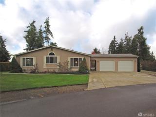 40 Green Meadows Dr, Sequim, WA 98382 (#1091440) :: Ben Kinney Real Estate Team