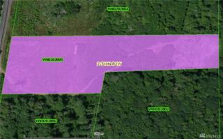 0 Frontage Rd, Castle Rock, WA 98611 (#1091474) :: Ben Kinney Real Estate Team