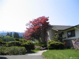 346 E Hillcrest Dr., Port Angeles, WA 98362 (#1091607) :: Ben Kinney Real Estate Team
