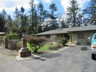 9103 58th Ave SE, Olympia, WA 98513 (#1091706) :: Ben Kinney Real Estate Team