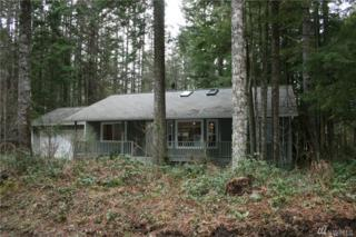 56312 343rd Ave E, Ashford, WA 98304 (#1091712) :: Ben Kinney Real Estate Team
