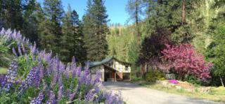 9001 Derby Canyon Rd, Peshastin, WA 98847 (#1091738) :: Ben Kinney Real Estate Team