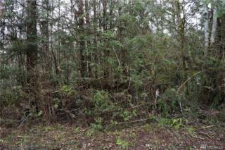 560 E Lakeshore Dr E, Shelton, WA 98584 (#1091786) :: Ben Kinney Real Estate Team