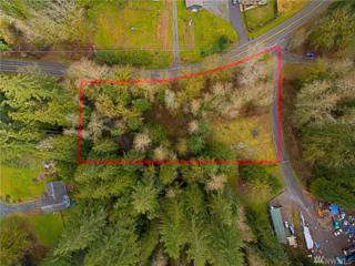 3202 172nd Ave NE, Snohomish, WA 98290 (#1091825) :: The DiBello Real Estate Group