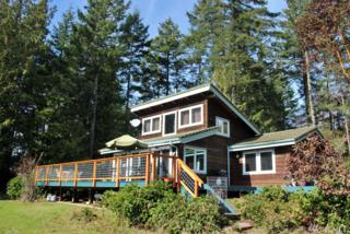 270 Boundary Point Rd, San Juan Island, WA 98250 (#1091830) :: Ben Kinney Real Estate Team