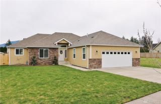 814 Maple Ridge Dr, Everson, WA 98247 (#1091911) :: Ben Kinney Real Estate Team